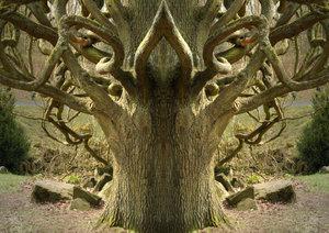 Spiegelwelten - magische Plätze