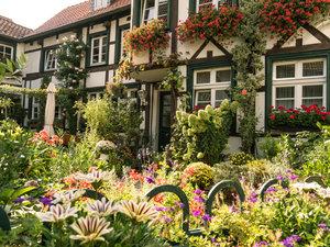 CALVENDO Puzzle Blumenpracht in Neumanns Hof 1000 Teile Lege-Grö