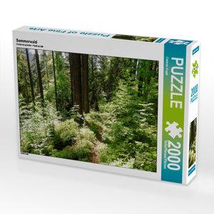 CALVENDO Puzzle Sommerwald 2000 Teile Lege-Größe 90 x 67 cm Foto
