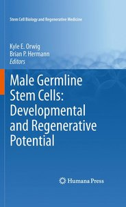 Male Germline Stem Cells: Developmental and Regenerative Potenti