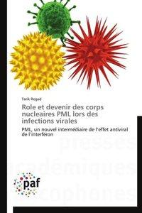 Role et devenir des corps nucleaires PML lors des infections vir