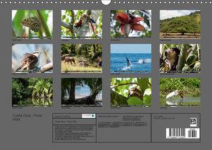 COSTA RICA - PURA VIDAAT-Version (Wandkalender 2019 DIN A3 quer)