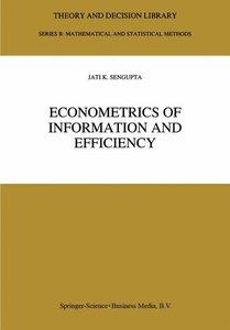 Econometrics of Information and Efficiency
