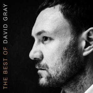 The Best Of David Gray (2LP/Gatefold)