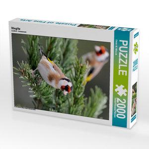 Stieglitz 2000 Teile Puzzle hoch