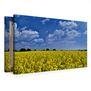 Premium Textil-Leinwand 75 cm x 50 cm quer Im Rapsfeld