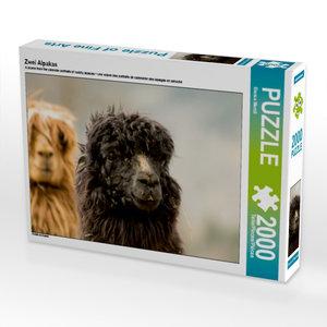 Zwei Alpakas 2000 Teile Puzzle quer