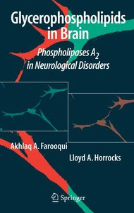 Glycerophospholipids in the Brain
