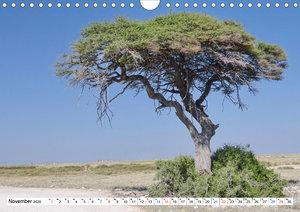 Namibia, Faszination Wüste und Tierwelt (Wandkalender 2020 DIN A