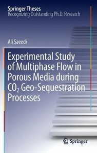 Experimental Study of Multiphase Flow in Porous Media during CO2