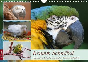 Krumm Schnäbel - Papageien, Sittiche und andere Krumm Schnäbel (