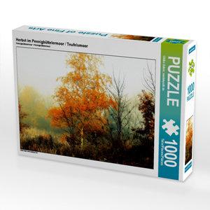 Herbst im Pennigbüttelermoor / Teufelsmoor 1000 Teile Puzzle que