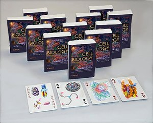 Cell Biology Playing Cards: Cell Biology Playing Cards: Art Card