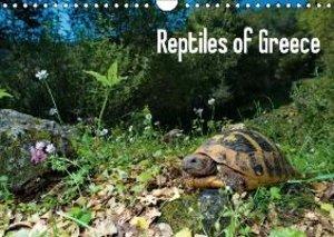 Reptiles of Greece / UK-version (Wall Calendar 2015 DIN A4 Lands