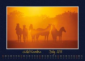 Wild Namibia 2018