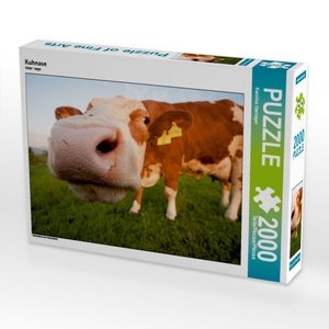 Kuhnase 2000 Teile Puzzle quer