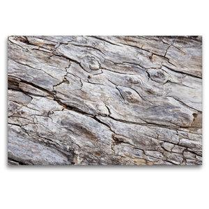Premium Textil-Leinwand 120 cm x 80 cm quer Uriges Treibholz