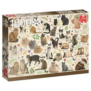 Jumbo 18595 - Katzen Poster, Puzzle, 1000 Teile