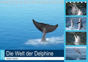 Die Welt der Delphine (Tischkalender 2020 DIN A5 quer)