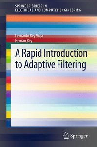 A Rapid Introduction to Adaptive Filtering