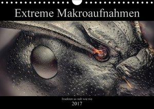Extreme Makroaufnahmen - Insekten so nah wie nie (Wandkalender 2