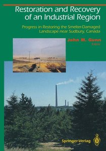 Restoration and Recovery of an Industrial Region