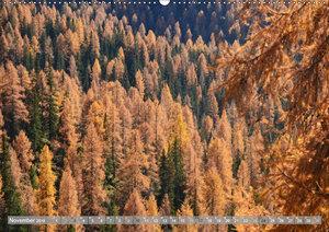 Wälderweit - Unterwegs im Wald I (Wandkalender 2019 DIN A2 quer)