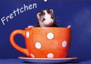 Frettchen - Ferrets (Wandkalender 2016 DIN A2 quer)