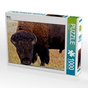 CALVENDO Puzzle Bison 1000 Teile Lege-Größe 64 x 48 cm Foto-Puzz