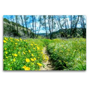 Premium Textil-Leinwand 120 cm x 80 cm quer Frühling auf Zypern
