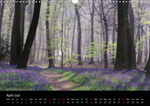 Magical Woodlands (Wall Calendar 2020 DIN A3 Landscape)