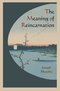 The Meaning of Reincarnation