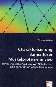 Charakterisierung filamentöser Muskelproteine in vivo