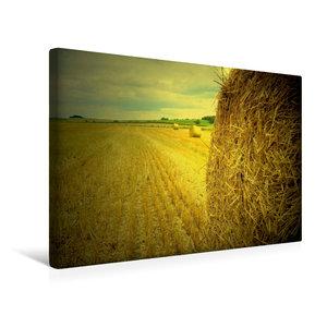 Premium Textil-Leinwand 45 cm x 30 cm quer Erntezeit