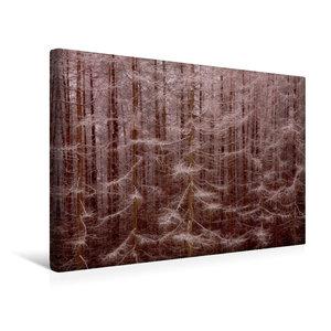 Premium Textil-Leinwand 45 cm x 30 cm quer Gansfelsen