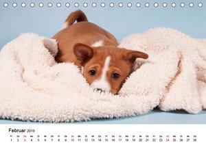 Süße Basenji-Kinder (Tischkalender 2019 DIN A5 quer)
