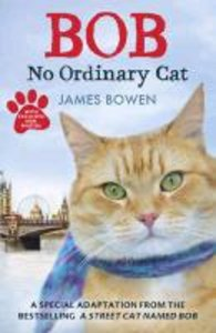 Bob - No Ordinary Cat