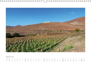 Quer durch Fuerteventura