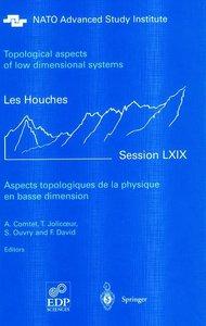 Aspects topologiques de la physique en basse dimension. Topologi