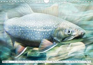 Fischwelt - Artwork