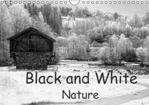 Black and White Nature (Wall Calendar 2015 DIN A4 Landscape)