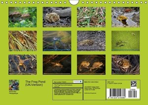 The Frog Pond / UK-Version (Wall Calendar 2015 DIN A4 Landscape)