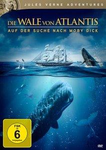 Die Wale von Atlantis - Auf der Suche nach Moby Dick