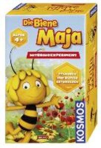 Die Biene Maja - Mitbringexperiment