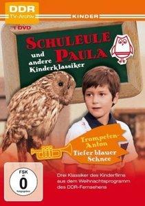 Schuleule Paula und andere Weihnachtsklassiker