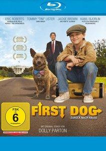 First Dog-Zurück nach Hause