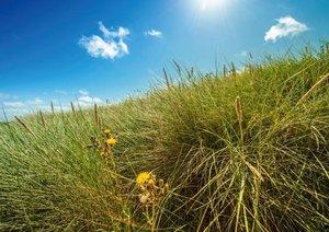 Wasser Wind Sand und Sonne (Posterbuch DIN A4 quer)