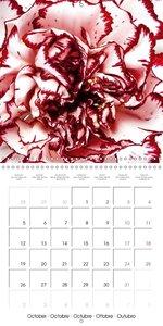 Au coeur des fleurs (Calendrier mural 2015 300 × 300 mm Square)