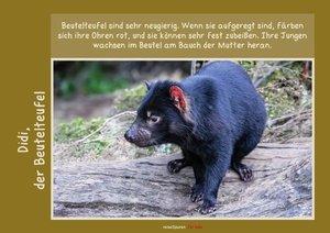 Meine liebsten Tierfreunde - Australien (Posterbuch DIN A2 quer)