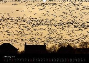 The Pinkfoot Goose Collection (Wall Calendar 2015 DIN A3 Landsca